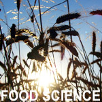 Food Science or Agricultural Science, Level 5, Meath