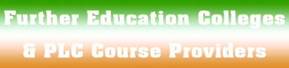 plc and further education colleges in Ireland